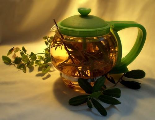 чай от глистов купить