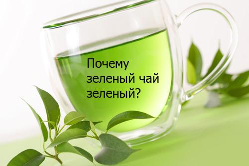 Почему зеленый чай зеленый ?
