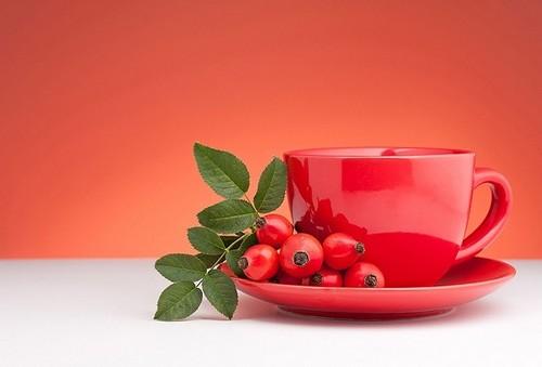 Рецепт и польза чая из шиповника