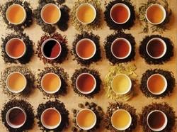 Цвет чая и его листья