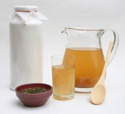 Правила выращивания чайного гриба