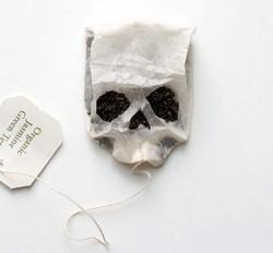 Безопасен ли нейлоновый чайный пакетик ?