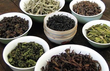 Типы чая и их уровни окисления