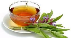 Заваренный шалфейный чай