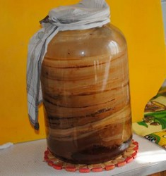 Чайный гриб в бутыльке