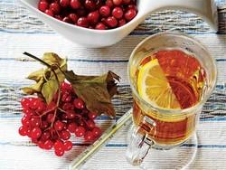 Чай с калиной, рецепты