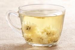 Зеленый чай с хризантемой
