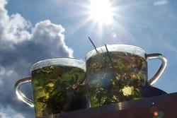 Какой чай пить летом в жару