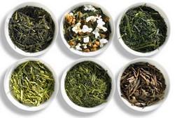 Какие бывают сорта зеленого чая?