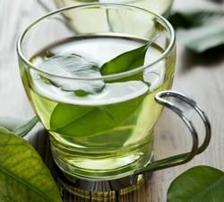 Зеленый чай против раковых заболеваний