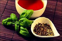 Чай с базиликом: польза и вред, рецепт заваривания