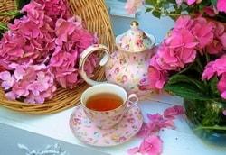 Целебный чай из гортензии