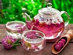 Чай из красного клевера